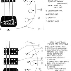 A Wiring Diagram Meiosis And Mitosis Blank G Andl Diagrams Schematics