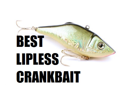 """2016-2017 best bass fishing lures - let's """"tackle"""" this, Fishing Bait"""