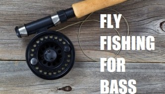 Fly Fishing For Bass – Tips For Largemouth And Smallmouth