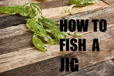 How To Fish A Jig – Everything You Need To Know