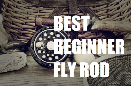 Best beginner fly rod an indepth look at the top 5 for Best fly fishing rods for beginners