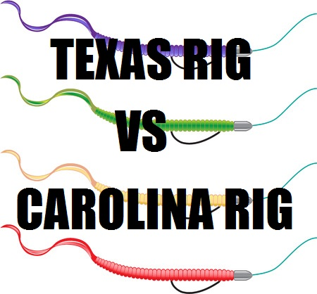 The Texas Rig vs The Carolina Rig
