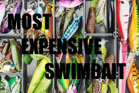 most expensive swimbait