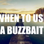 When To Use A Buzzbait – 7 Situations You Need To Be Throwing It