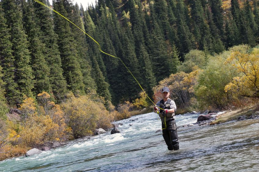 best 6wt fly rod
