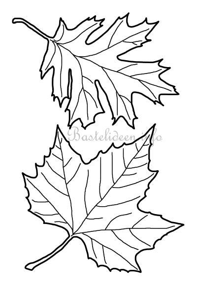 Basteln zum Herbst Bltter Vorlage