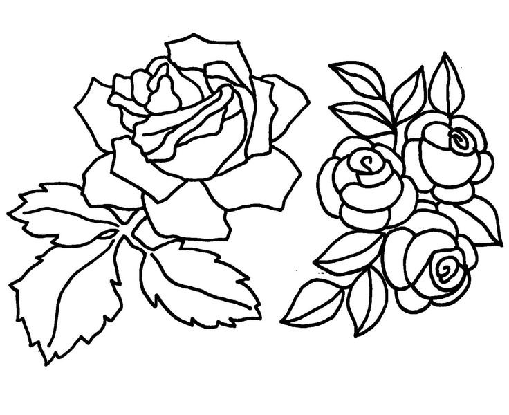 Malvorlagen fr Blumen etc