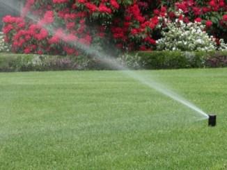 Acqua per uso irriguo regolamento e disposizioni corretto uso