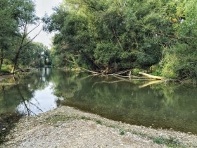 Bastia Umbra, aree verdi, amministrazione ha stanziato diecimila euro