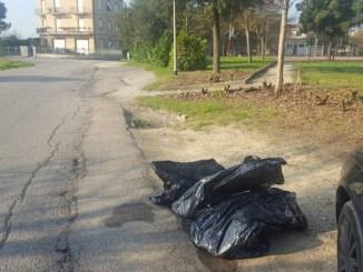 Getta sacco immondizia sul ciglio della strada, multa per residente