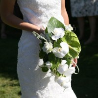 📰 Rassegna stampa 📰 – Matrimoni, ecco dove celebrarli a Bastia Umbra