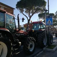 Festa degli Agricoltori, circa 400 macchine agricole hanno sfilato