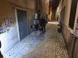 Controlli della Polizia a Bastia, 73 persone fermate, 38 erano pregiudicate
