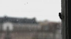 Ceux qui marchent contre le vent, réalisé par Bastien Simon