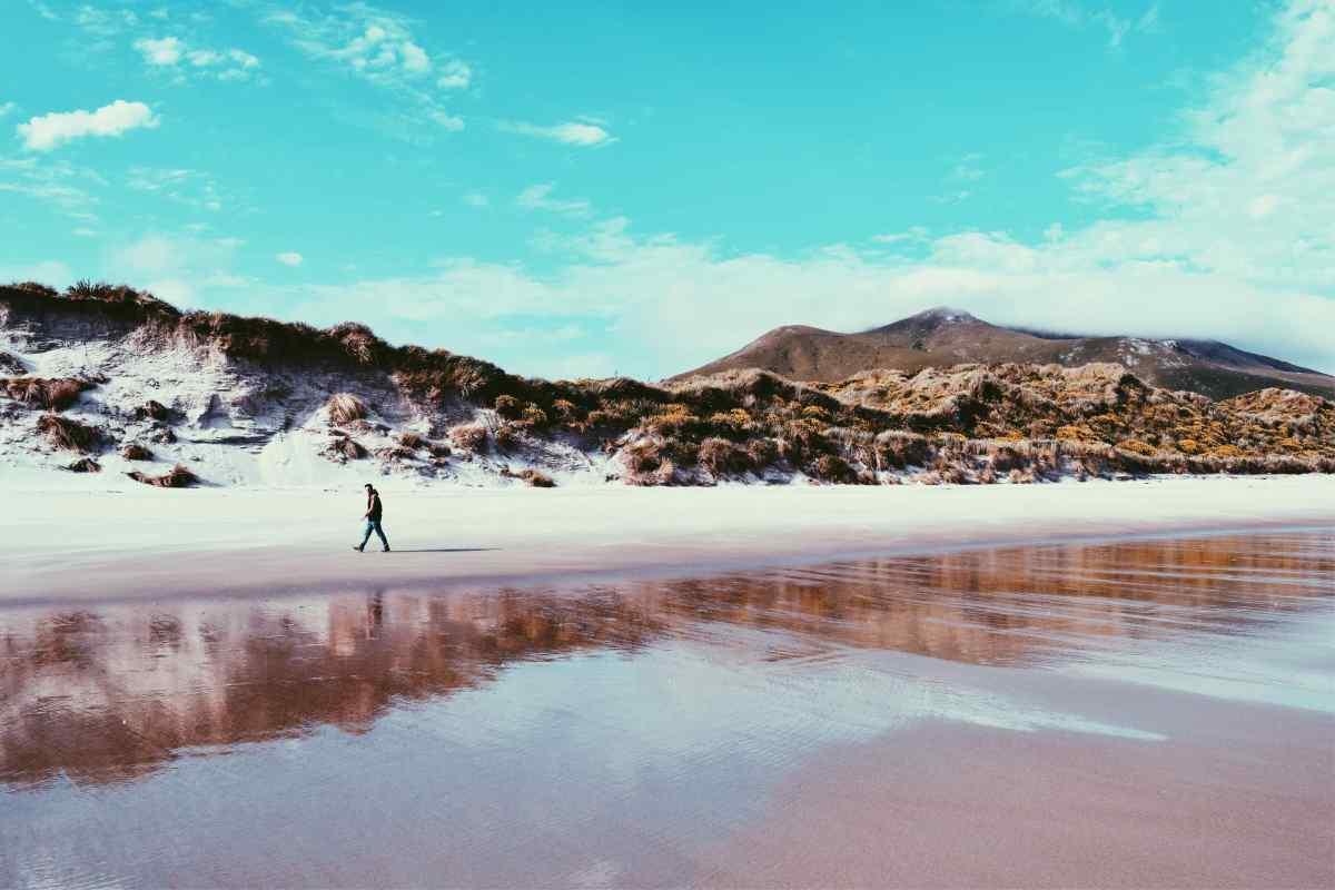 Allan's Beach, Otago Peninsula