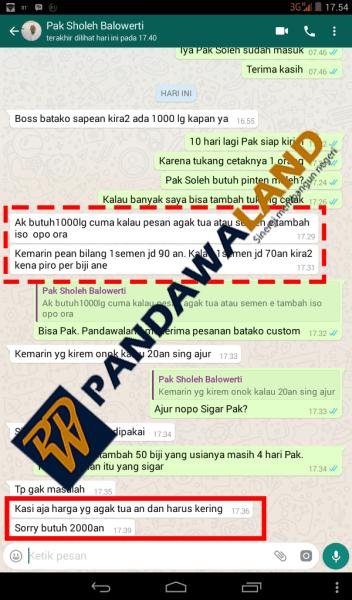 beli-batako-pandawaland-soleh-6
