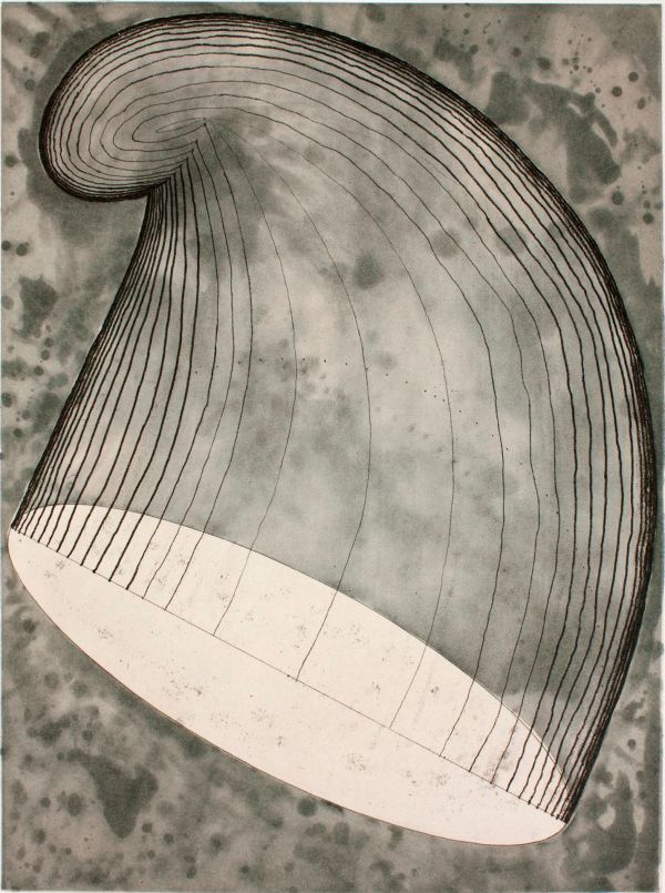 Acquisitions Martin Puryear Prints Museum Of