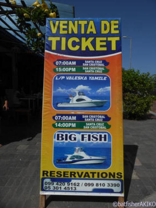 定期船チケットが買える場所 目印
