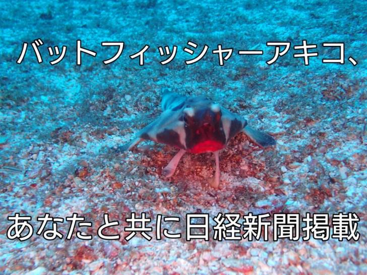 バットフィッシャーアキコ、あなたと共に日経新聞掲載 アイキャッチ