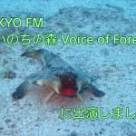 TOKYO FM『いのちの森 Voice of Forest』に出演しました アイキャッチ