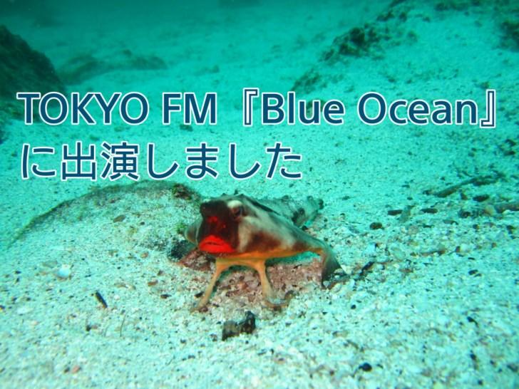 TOKYO FM『Blue Ocean 』に出演しました アイキャッチ