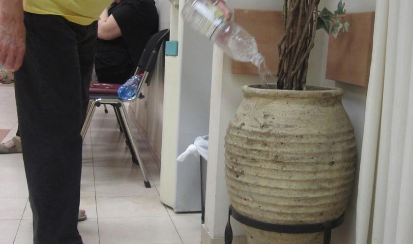 מימזיס מושלם, בית חולים שערי צדק לפני שנה, גם צמחים פולימרים צמאים.
