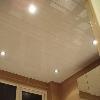 Ceiling Panels - No Painting, No Flaking, No Mould, No ...