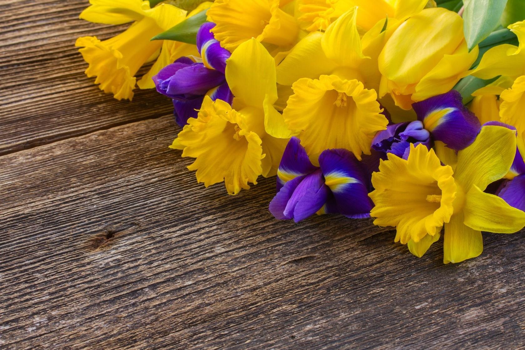 TBM 1708.15 DDOP-15: Grocery Store Flowers: Jack