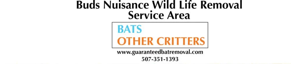 Bat Removal Areas