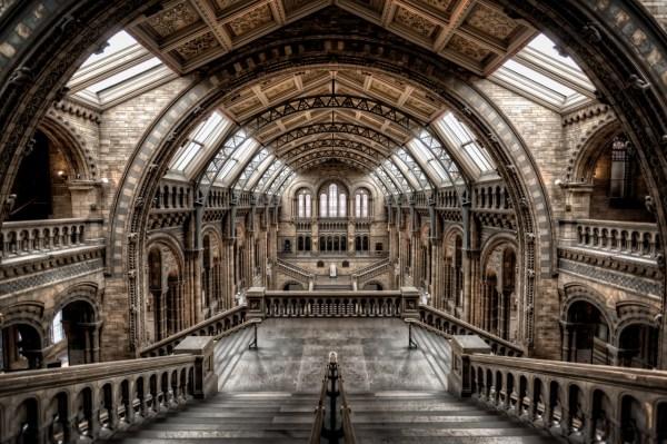 Natural History Museum Londonbattered Luggage