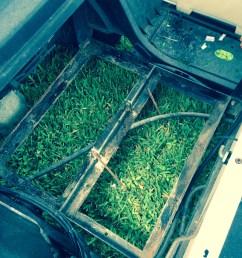 ezgo golf cart battery bank frame area batterypete com [ 1224 x 1632 Pixel ]