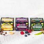 יורודיג' - סדרת יוגורטים פרוביוטית חדשה על בסיס צמחי - YO'RIDGE - THE REAL FOODISTS