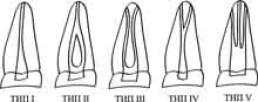 walker classification