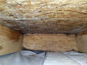 Baumangel Dachbalken verschimmelte & Dachdämmung feucht führt zu Bauschaden