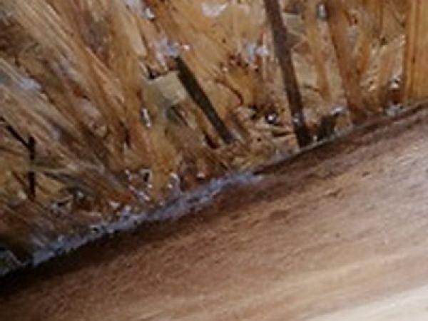 Dachstuhl in angeschimmelter Ausführung, Dach, Flachdach, Estrich, Bodenbelag