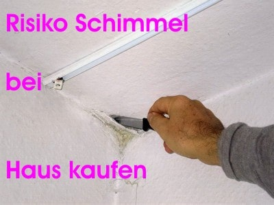 Hausgutachter Schmalfuss Altenburg Immobiliengutachter
