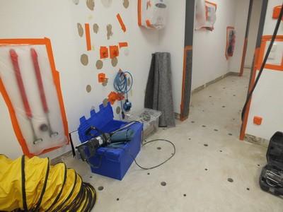 Schimmel-Gutachter Sanierung Schimmelpilz unter dem Fußboden nach Wasserschaden