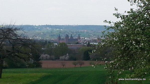 Blick auf Aschaffenburg mit Schloss Johannisburg von Schweinheim