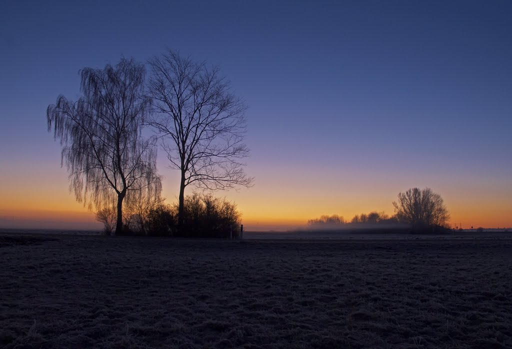 Im Freisiniger Moos an einem kalten Wintermorgen (17. Januar 2011; 07:24 Uhr)
