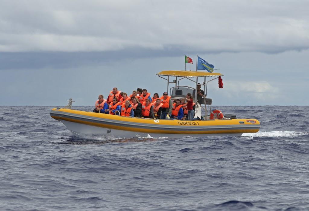 mit dem Schlauchboot zum wahle-watching