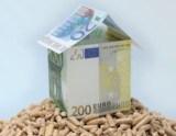 Haus aus Geldscheinen steht auf Holzpellets