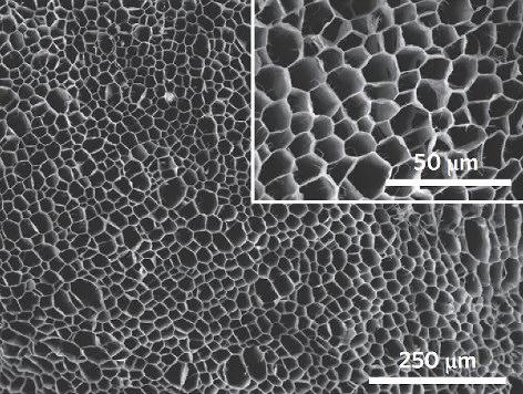 Mikroskopische Aufnahme von Nanodämmung Nanoschaum