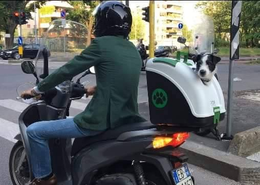 hot-vente dernier Clairance de 60% gamme exceptionnelle de styles pet-on-wheels-trasportino-bauletto-cani-gatti-moto-scooter ...