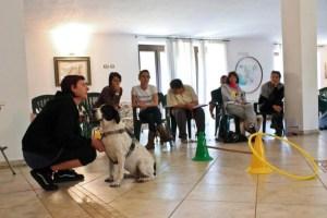DOGSOUL | EDUCATRICE CINOFILA E PENSIONE | ROMA