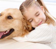 Cos'è la PET THERAPY, gli interventi ASSISTITI CON ANIMALI