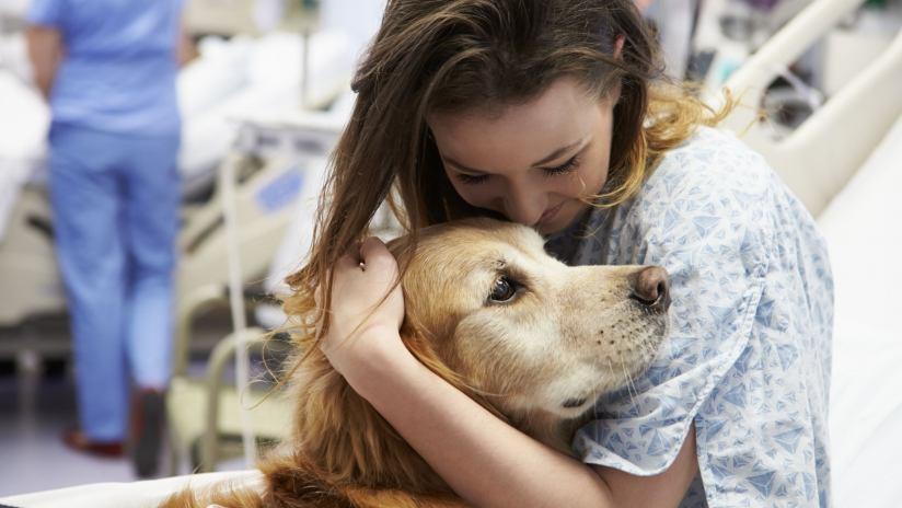 che cos'è la pet therapy