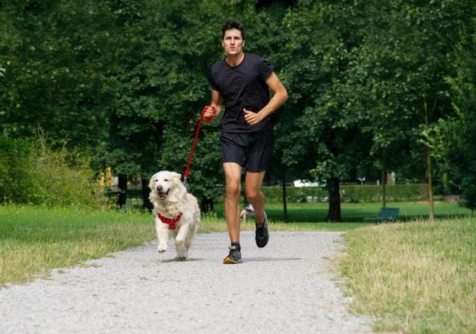 Bob Martin Dog Run: tutti i dettagli della corsa non competitiva