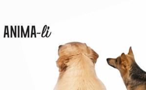 PET THERAPY UDINE | Anima-li: percorsi di cambiamento