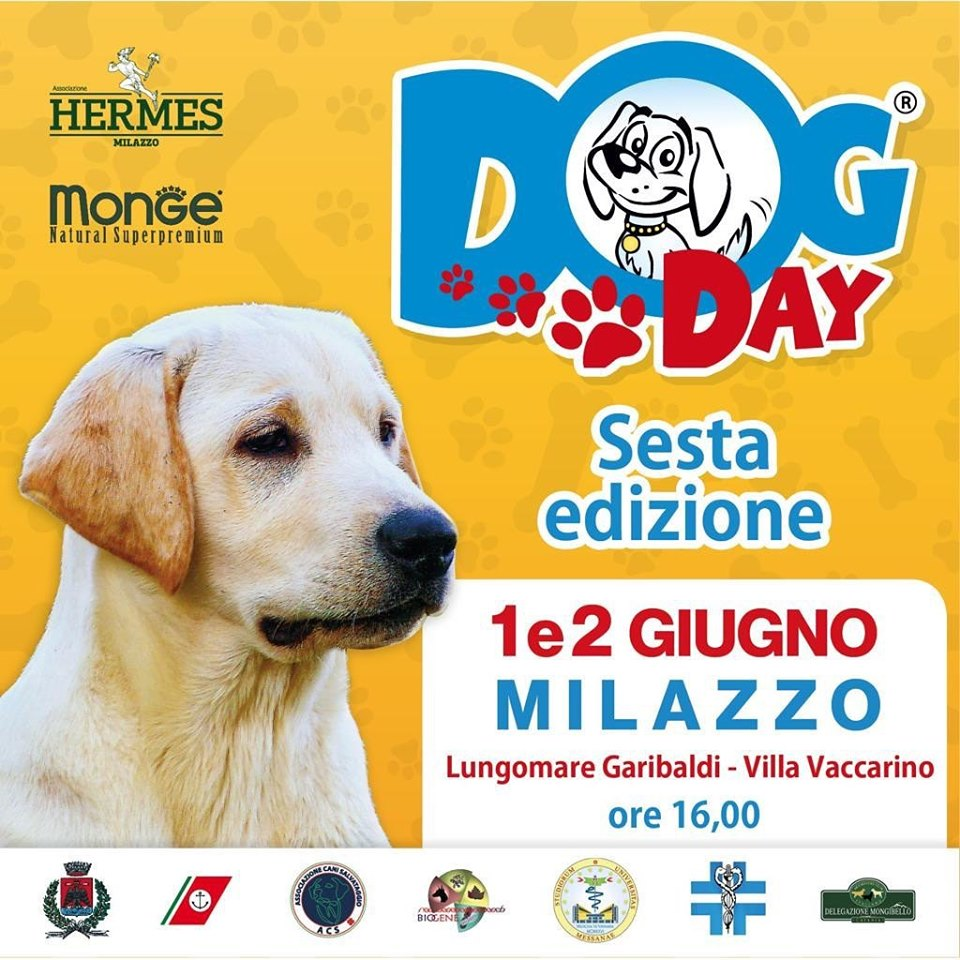 Milazzo Dog Day