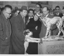 La storia di Fido, l'Hachiko italiano di Borgo San Lorenzo